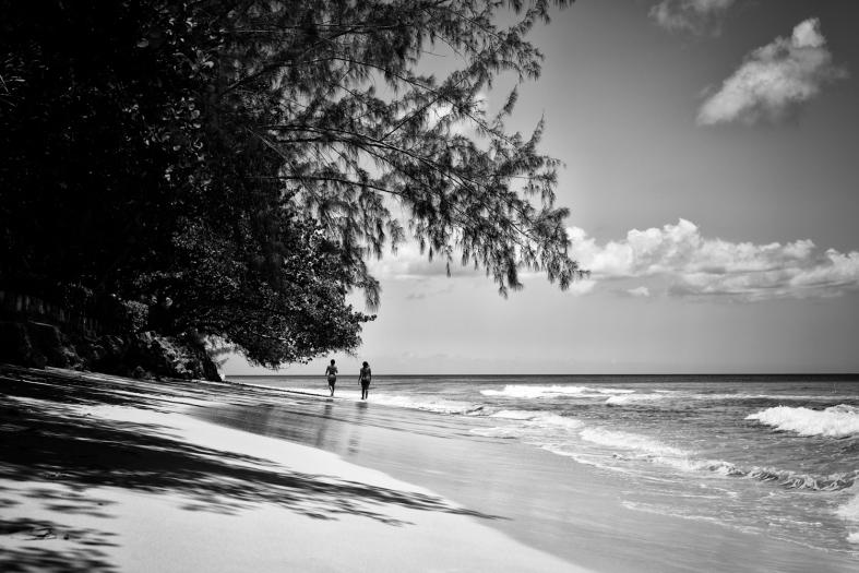Barbados. 01.08.2015 Leica MM 246; APO Summicron-M 50mm 1/250sec; f/16; iso320; LR CC