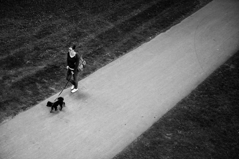 Wetzlar DE. 03.09.2015 Leica MM 246; APO Summicron-M 50mm 1/180sec; f/4; iso320